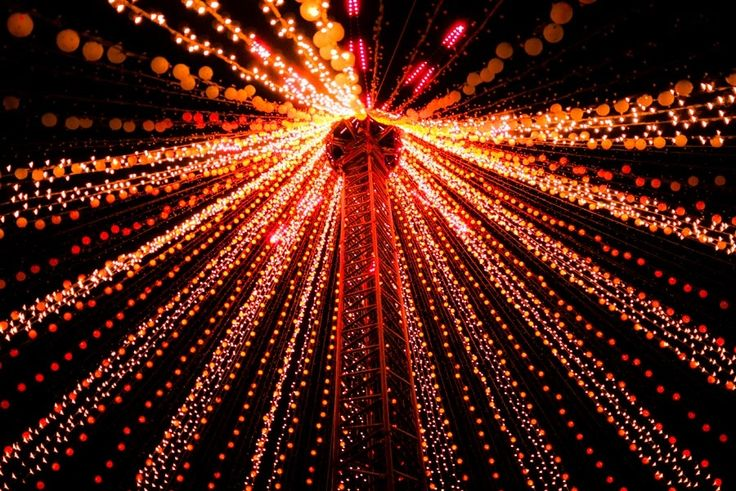 The Fibre Optic Christmas Tree by Phillip Wong,