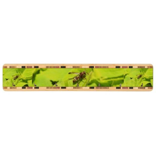 Vespidea paper/Potter wasp key  holder