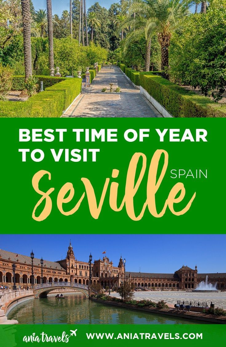 Seville has unlimited sunshine, Rioja, and tapas. Along with many festivals and activities happening, but when is the best time to visit Seville? | Spain | Sevilla | Things To Do