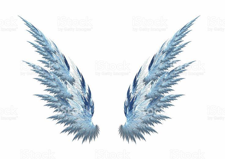 asas de anjo ficam - photo #19
