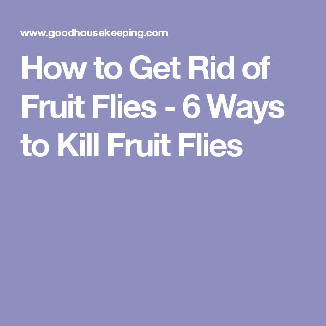how to kill flies naturally