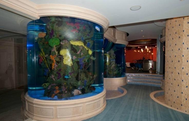 1000 images about big fish tanks on pinterest atlantis for Big fish tanks