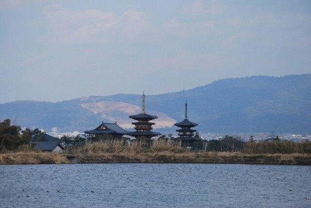 勝間田の池から唐招提寺を望む 1