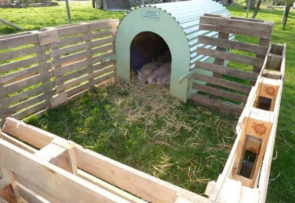 animal pen with pallets (great idea for someone with access)