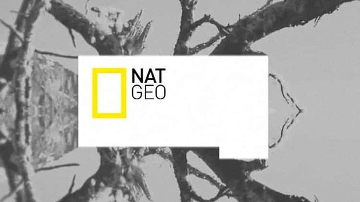 Natgeo TV Branding Pitch from DHNN