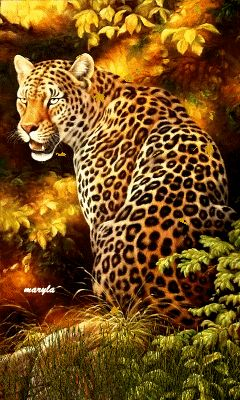 Free animated leopard mobile wallpaper by maryla75 on Tehkseven