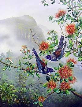 Tui on Rata by Jeanette Blackburn for Sale - New Zealand Art Prints