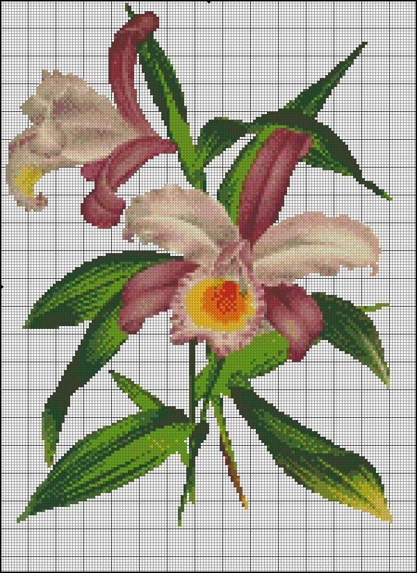 Resultado de imagen para orquideas para toallas en punto de cruz