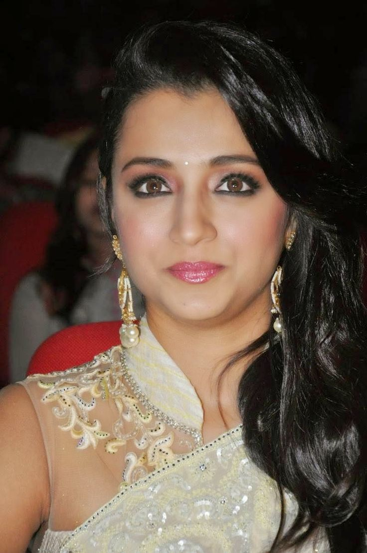 Trisha Krishnan at Lion Telugu Movie Audio Launch Photos | Bollywood Tamil Telugu Celebrities Photos