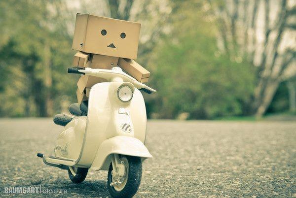 where's your helmet, little box?
