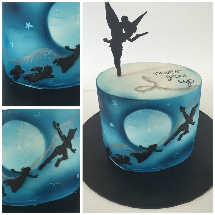 peter pan and tinkerbell wedding cake best 20 pan cakes ideas on 18305