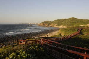 Image Detail for - Coastal dune boardwalks at Gonubie Beach;East London;East Cape Province;South Africa