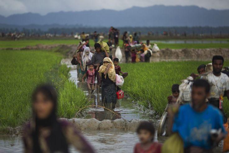 Desde el 25 de agosto de 2017, más de 500,000 refugiados Rohingyas han huido de la violencia en Myanmar y cruzado la frontera hacia Bangladesh buscando seguridad. En total hay casi un millón de refugiados Rohingyas en Bangladesh. Quienes llegan han compartido horribles historias con Médicos Sin Fronteras, historias sobre sus pueblos siendo quemados y saqueados, y de una violencia generalizada contra la población civil. Durante las primeras tres semanas, MSF atendió a más de 250 pacientes que…