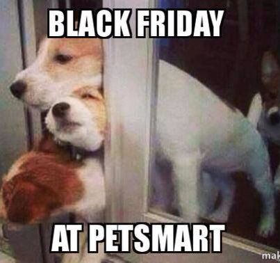 Black Friday humor for the day