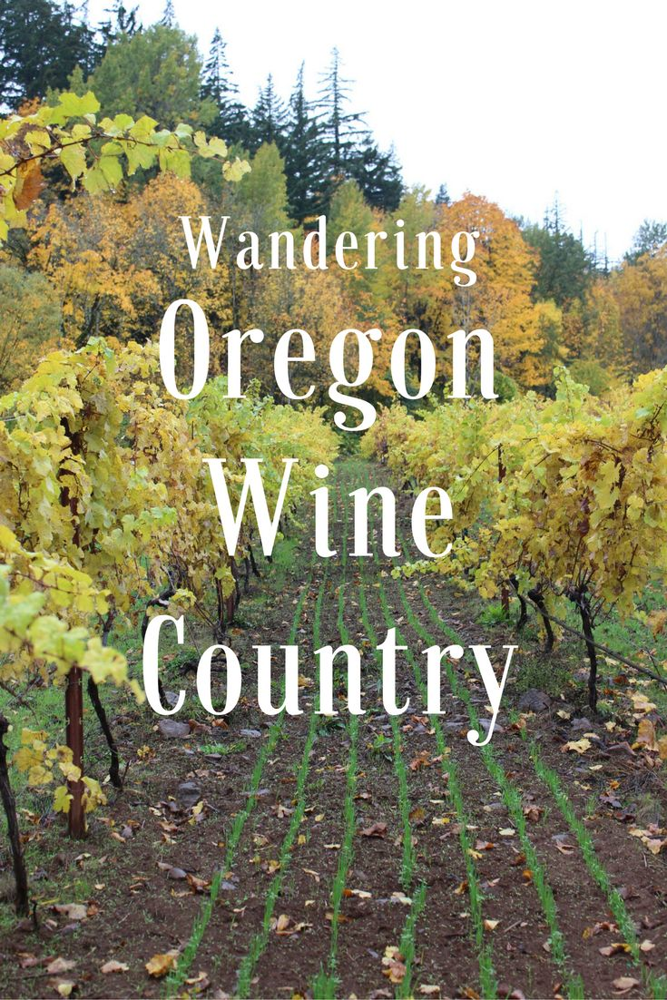 Wander the Columbia Gorge & Hood River wine country with Liz as she enjoys a 2-day itinerary filled with fine Oregon wine & natural beauty.
