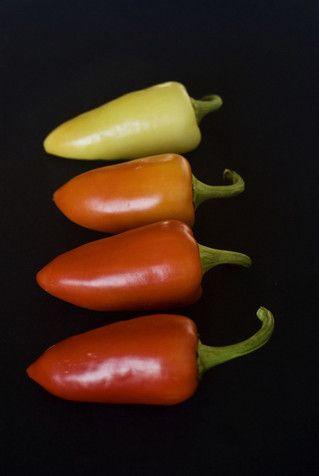 santa fe-grande pepper