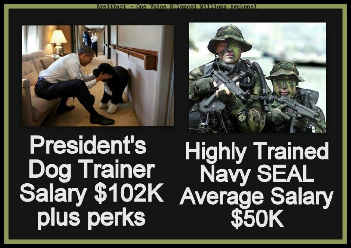 Obama's dog trainer's salary is actually $102K per year, for part time work,  plus perks.  Read about it here:  http://www.dallasblog.com/201112111008590/dallas-blog/obamas-dog-trainer-earns-102000/year.html