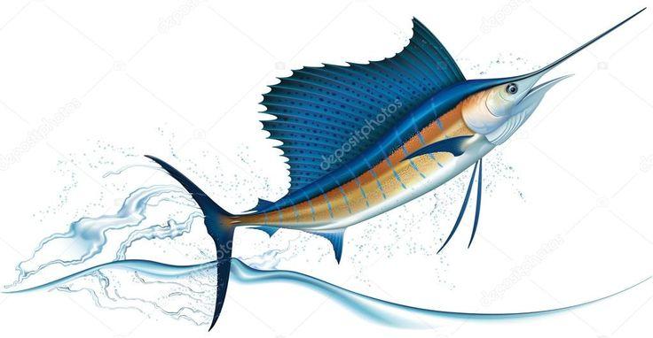 Resultado de imagen para pez marlin azul