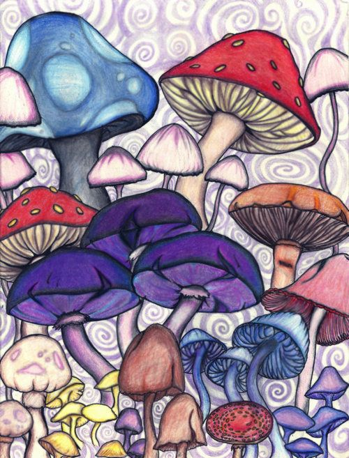 Purplesque shrooms