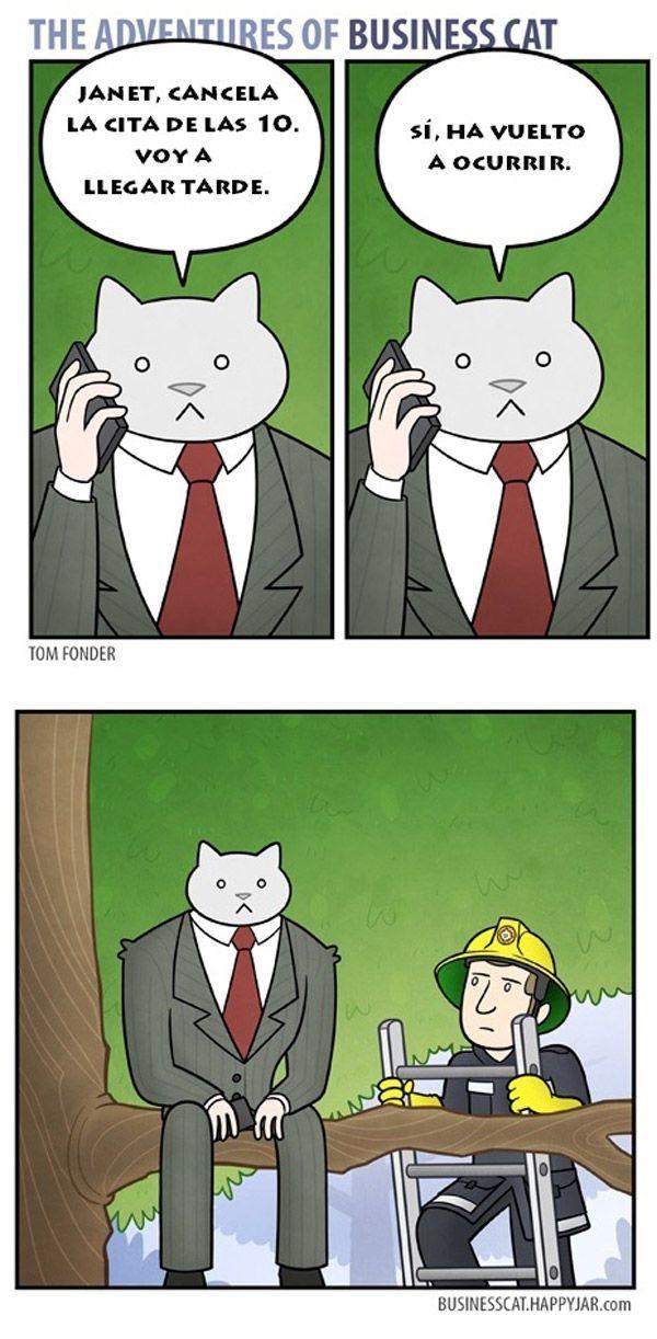 El gato empresario: cancela la cita.