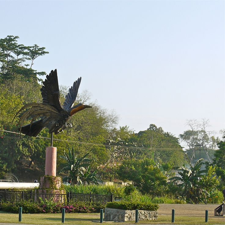 Bird of Paradise Statue - Port Moresby