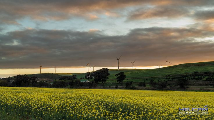 Looking towards the Biotherm Dassiesklip Wind Energy Facility, Caledon in South Africa