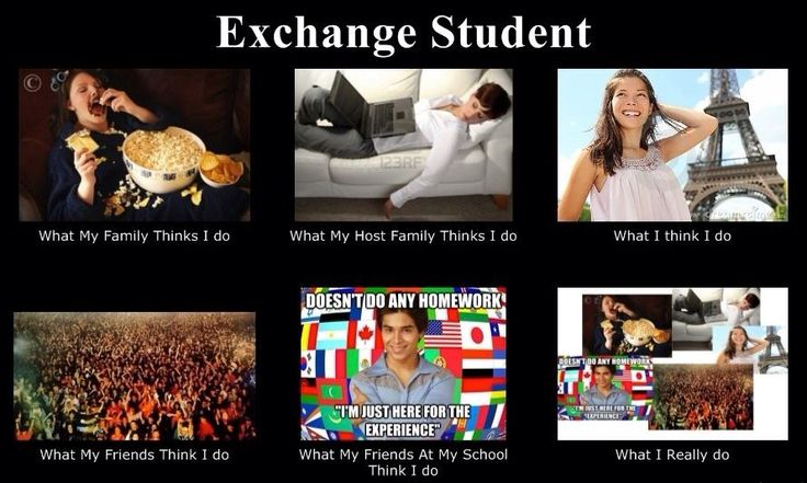 Band 9 essay sample: Should students participate in international student exchange programs?