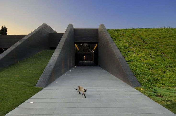Underground Homes : Concrete House 2 by A-cero Architects