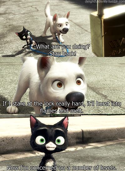 Bolt. We just watched this movie as one of our Family Movie Night movies last weekend. It is so cute.