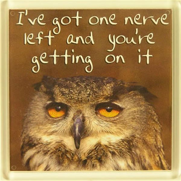 I've got one nerve left and you're getting on it | Quotes ...