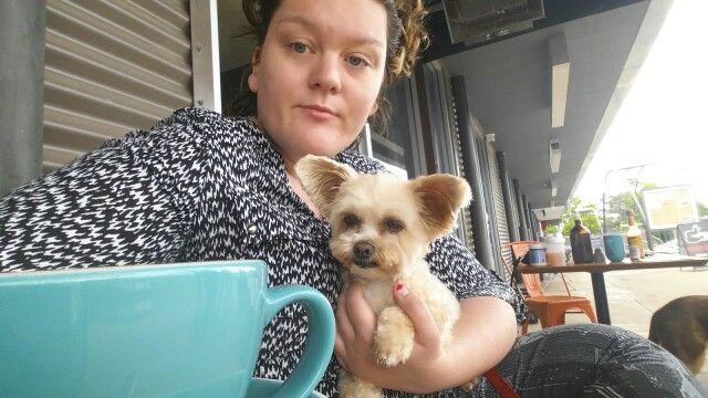 Cafe dog @foxandbow
