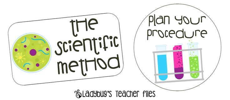 Here's a nice set of posters on steps in one approach to a scientific method.