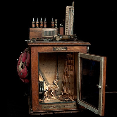 """Ron Pippin...Avian Science , 2010, cabinet of curiousities with found objects, 22"""" x 13"""" x 12"""" (RONP241)"""