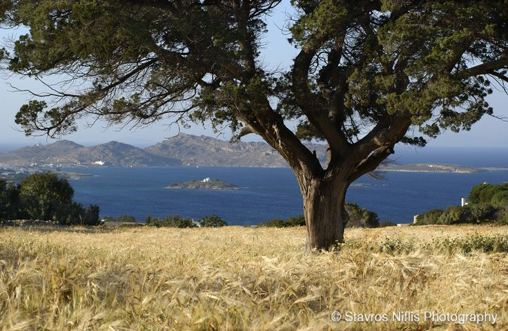 Paros island , Greece !!!