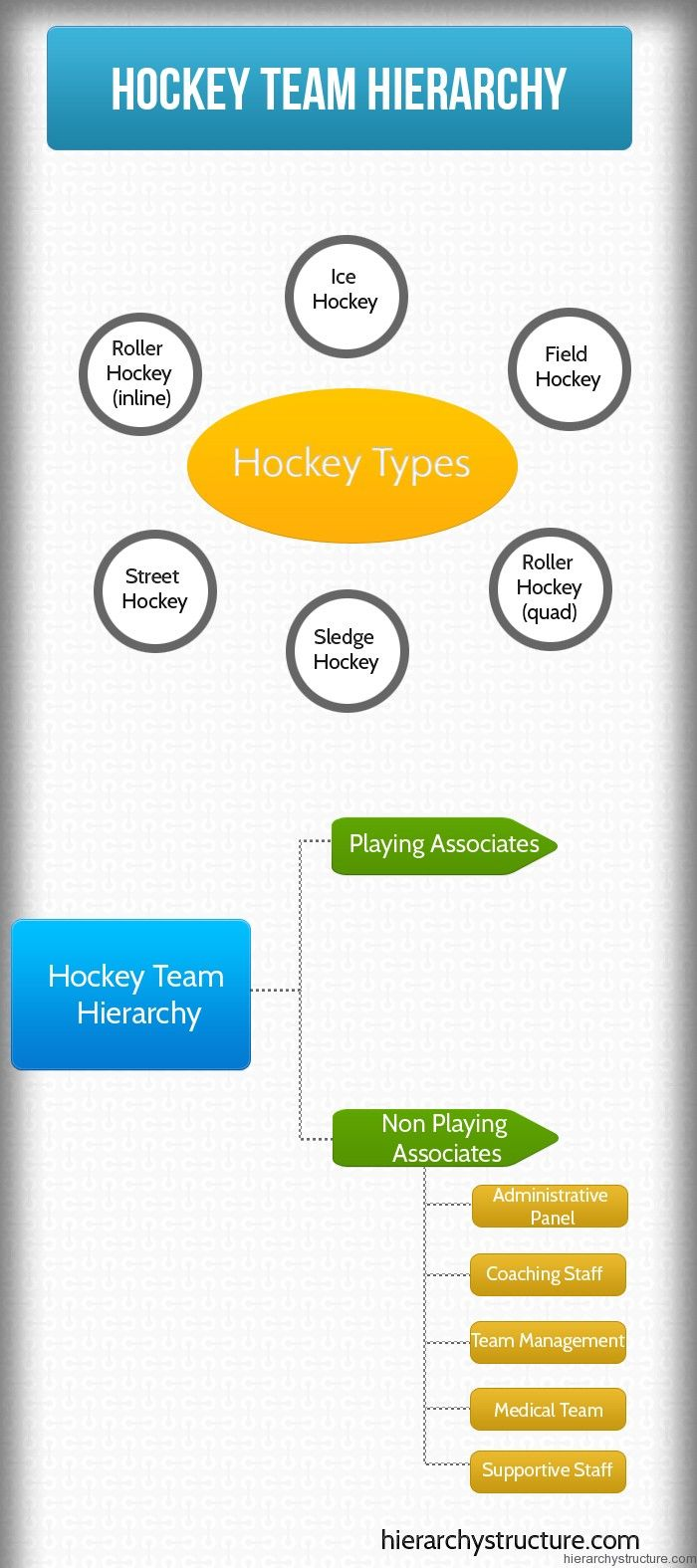 1000 Images About Sports Hierarchy On Pinterest