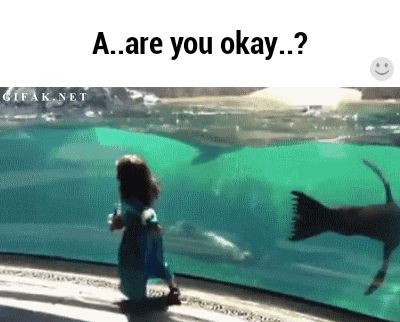 Oh! Hey.... you okay?