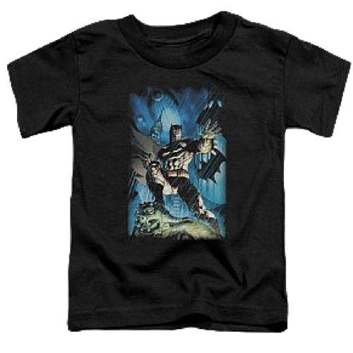 Batman Stormy Night