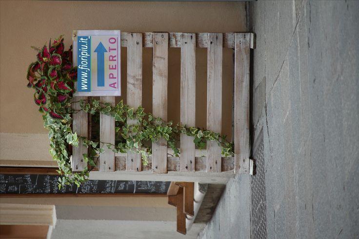 www.fioripiu.it indicaizione semplice :-)