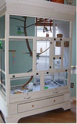 The owner and creator of this armoire-turned-aviary didn't always keep such an elaborate home for her birds. Her zebra finches were previously confined to a small cage with hardly any room to fly. So, using an old wardrobe as a starting point, the creator added support and turned the wardrobe into a beautiful aviary for her feathered friends...