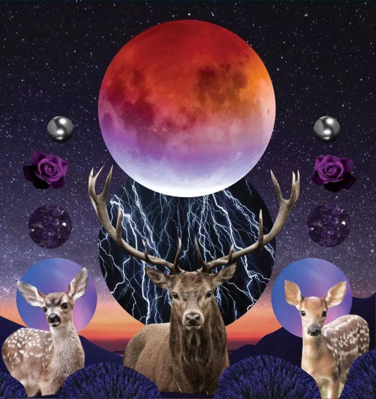 July full moon lunar eclipse tarotscopes by sarah faith