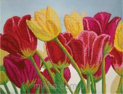 МИКА-0302 Тюльпановый сад