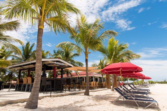 Now $285 (Was $̶3̶0̶0̶) on TripAdvisor: Bohio Dive Resort, Grand Turk. See 445 traveler reviews, 808 candid photos, and great deals for Bohio Dive Resort, ranked #1 of 2 hotels in Grand Turk and rated 4.5 of 5 at TripAdvisor.