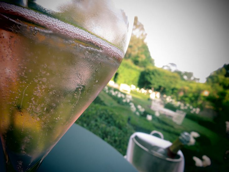 Champagne in the sunshine at Langshott Manor | by http://qosy.co