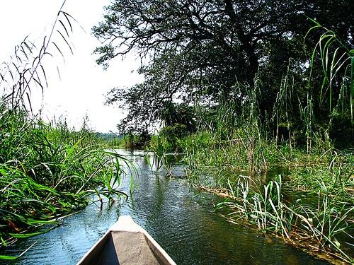 El #Delta del #Okavango integra un imponente oasis en el corazón del desierto, la ofrenda de un río que muere para gestar la vida. Un santuario de exuberante fauna salvaje o cómo África debió ser antes de la era del hombre. Una llanura anegada de agua y vida, de densa vegetación, un extraordinario milagro de la #naturaleza.