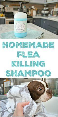 Homemade Pet Shampoo That Kills Fleas via @Mom4Real