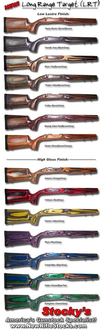 Savage model 10 stock options