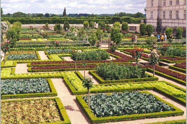 Un quadrato di Giardino :: Discussione: Ortogiardino-giardorto-ortaggi ornamentali-fiori nell'orto- biete colorate-cavoli colorati (1/1)