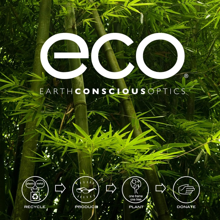 Eco - recycle, produce, plant and donate!