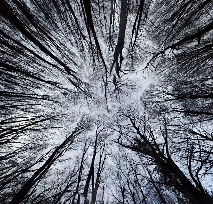 monte-faito-winter.jpg (1080×1040)