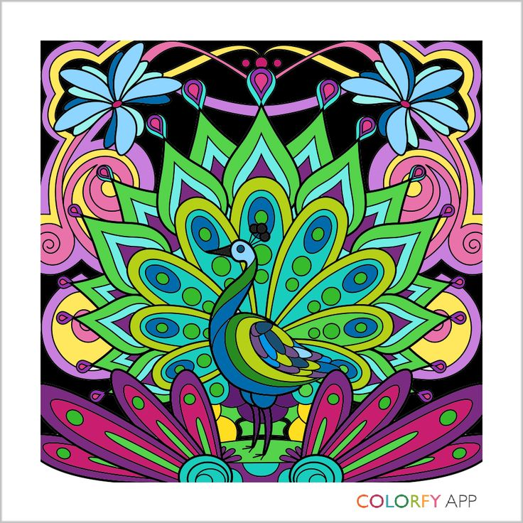 Colorfy App For Kindle